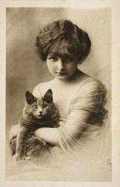 Vintage gatos