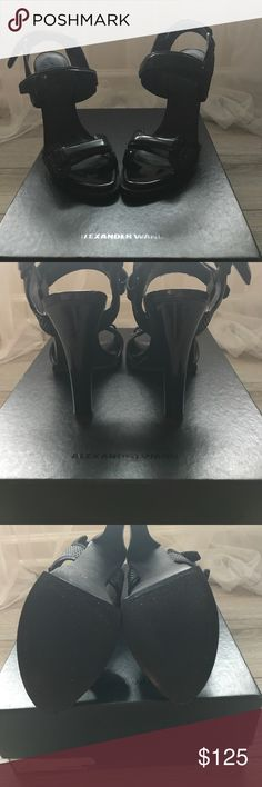 These are new and never worn wrong size too big! Alexander Wang Orig $485 comes with box US9 UK39 Alexander Wang Shoes Heels