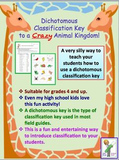 A fun way to teach your students how to use a dichotomous classification key.