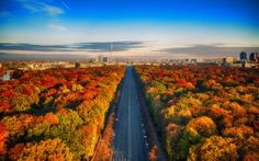 WALLPAPERS HD: Berlin Autumn