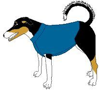 Fleece Dog Sweater. Although the pattern can be scaled to fit your dog and fleece is stretchy, the tube-type construction of this sweater makes it hard to put on and take off of large dogs. This pattern is more suited to medium-sized and smaller dogs