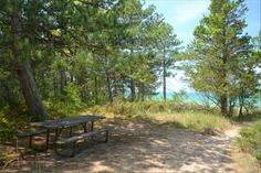 The Pinery, The Beach, Camping in Ontario Parks Ontario Parks, Beach Camping, Outdoor Furniture, Outdoor Decor, Road Trip, Canada, Plants, Summer, Home