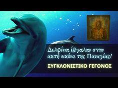 Δελφίνια 🐬 έβγαλαν στην ακτή εικόνα της Παναγίας... (ΣΥΓΚΛΟΝΙΣΤΙΚΟ ΓΕΓΟΝΟΣ) - YouTube Movies, Movie Posters, Youtube, Art, Art Background, Films, Film Poster, Kunst, Cinema