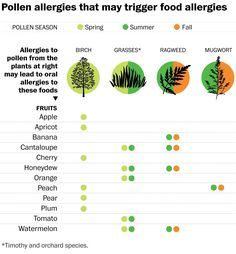 Does your mouth itch when you eat apples or other fruits? Does your mouth itch when you eat apples or other fruits? – The Washington Post Fall Allergies, Pollen Allergies, Seasonal Allergies, Allergy Asthma, Allergy Relief, Oral Allergy Syndrome, Seasonal Allergy Symptoms, Peanut Allergy, Bon Appetit