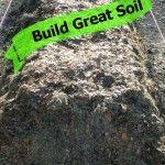 Build Million Dollar Garden Soil