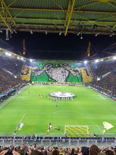 Tottenham Hotspur, Champions League, Sandro, Soccer, Club, Games, Boys, Sports, Beautiful