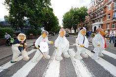 Abbey Road, Wimbledon Common, Zebra Crossing, Famous Photos, Pop Rock, Ways Of Seeing, Beetles, Beautiful Birds, Roads