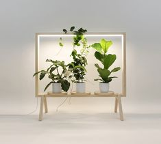 Minimalist Frame for Potted Plants