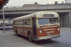 Red Arrow, Busses, Public Transport, Canada, Pittsburgh, Upper Darby, David Wilson, Evening Sandals, Cars