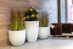 Arrange plant pots with different sizes and use different plants to create a stunning atmosphere. Find our large selection of planters at: https://www.planters-online.co.uk/.