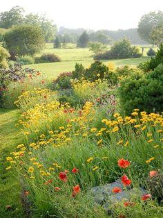 Meadow Garden, Garden Cottage, Dream Garden, Fairytale Cottage, Beautiful Landscapes, Beautiful Gardens, Beautiful Flowers, Beautiful Places, Beautiful Pictures
