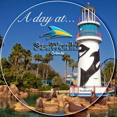 Originally published asMY DAY AT SEA WORLD by Hayden of Disney with Babies, Toddlers & Preschoolers  My family and I visited Sea World Orlando in May. This was our first visit
