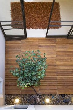 Patio- exterior area integrate with the interior space House Landscape, Our World, Design Projects, Interior Architecture, Garden Cottage, Exterior, House Design, Patio, Modern