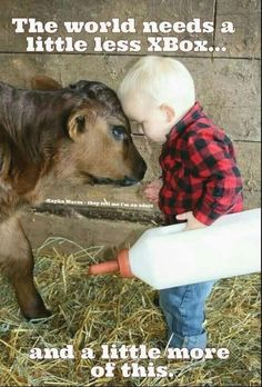 Image in Adorable, Cute, Kids, People. Farm Animals, Animals And Pets, Cute Animals, Wild Animals, Animal Pictures, Cute Pictures, Farm Pictures, Funniest Pictures, Tier Fotos
