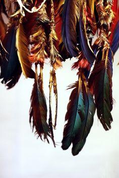 bohemian feathers