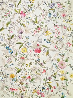 wallpaper -- hallway -- larobotique: William Kilburn 'Wild flowers design for silk material' 1790 Textile Patterns, Flower Patterns, Flower Designs, Print Patterns, Textiles, Flower Pattern Design, Deco Floral, Motif Floral, Vintage Floral