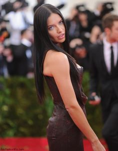 Adriana Lima at 2014 MET Gala.