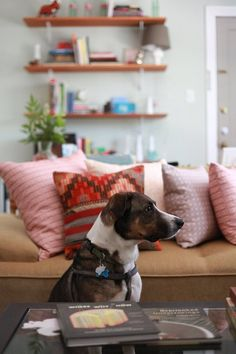 Ideas around the house on pinterest fabulously for Apartment therapy melissa maker