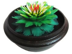 Thai Hand-Carved Soap Flower, 4 Scented Soap Carving, Green Dahlia In Decorative Pine Wood Case