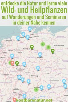 Fast überall findest du Anbieter von Wildkräuterwanderungen und Heilkräuterseminaren. Auf dieser Karte findest du bestimmt auch Anbieter in deiner Nähe! #kräuterwanderung #wildkräuter #seminare #heilkräuter #wildpflanzen