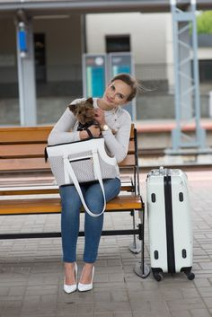 amiplay Morgan pet carrier