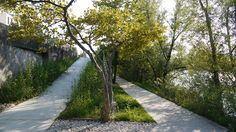 Banks-of-Saone-by-BASE-Landscape-Architecture-03 « Landscape Architecture Works | Landezine