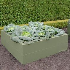 The Harrod Metal Raised Beds & Planters in Heritage Green combine innovative design with stunning aesthetics to create a range of high quality metal raised beds .