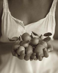 Small Apples Photo: Kristoffer Albrecht (via Tina Modotti, Portrait Fotografie Inspiration, Biennale De Lyon, Lingerie Design, Apple Photo, Berenice Abbott, Cecil Beaton, Art Corner, Edward Weston