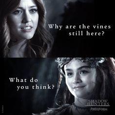 Clary et la reine des fées