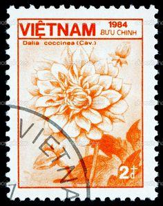 depositphotos_19192535-Postage-stamp-Vietnam-1984-Dahlia-Coccinea-Flower.jpg (810×1024)
