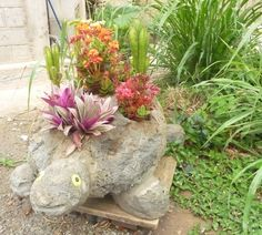 esta es  mi tortuga con flores..