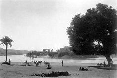 le temple de Philae, encore à son emplacement originel