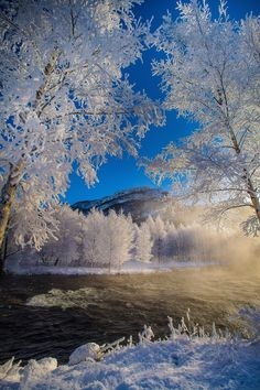 Taste of winter when the snow is falling ..... Rogaland, Norway