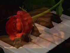 André Gagnon L'Amour rêve - YouTube