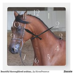 Beautiful thoroughbred arabian stallion square wall clock Arabian Stallions, Thoroughbred, Wall Clocks, Hand Coloring, Dog Design, Funny Cute, Dog Cat, Horses, Animals