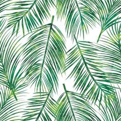 Illustration about Vector illustration of green palm tree leaf seamless pattern. Illustration of palm, jungle, abstract - 52688678 Palm Tree Leaves, Palm Trees, Tropical Leaves, Murals Your Way, Beach Please, Botanical Wallpaper, Leaf Background, Tree Photography, Leaf Flowers