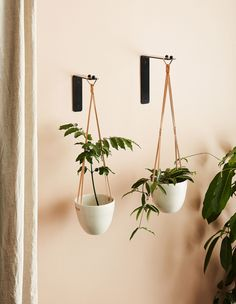 A New Range Of Modern Plant Accessories From Ivy Muse. Plant Hooks, Hanging Plant Wall, Hanging Planters, Plant Hanger, Hanging Gardens, Diy Hanging, Wall Planters, Hanging Baskets, House Plants Decor