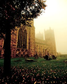 allthingseurope: Durham Cathedral, England (by lucyshena) enchantedengland: Mystic autumn who can resist that? Well not me. Anyway I have been working for going on nine hours now and need to do more work, and it is all terribly terribly unfair. Places To Travel, Places To See, Travel Destinations, Beautiful World, Beautiful Places, Amazing Places, Durham City, Durham Castle, Durham Cathedral