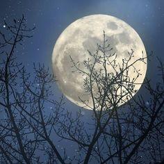 Neumond, Halbmond, Vollmond ... Du fragst dich, wie sich der Mond auf dich auswirkt? Wir erklären es dir!