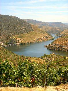 Douro Wine Region, Portugal