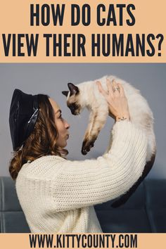 The relationship between cats and their owners is a cute albeit a mysterious one. I know cat owners will relate to this. So how do you think your cat or cats see you?. In this article, lets learn exactly how do cats see humans. #catvsdogowners #firsttimecatowners #catownertips #proudcatowners Cat Care Tips, Pet Care, Cat Character, Character Design, Cat Behavior Problems, Cat Water Fountain, Living With Cats, Cat Vs Dog, Cat Facts