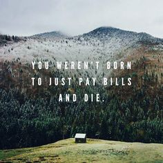 You weren't born to just pay bills and die.