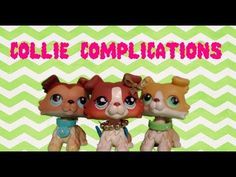 Collie Complications 1: The Disturbance - YouTube