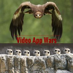 Video App Wars Meerkat vs Periscope