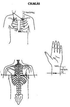 Massage, Kuroko, Ayurveda, Medicine, Massage Therapy