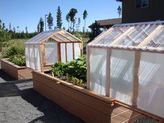 Byg et højbed, med indbygget drivhus