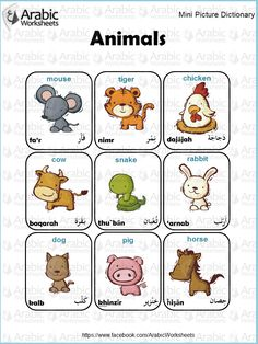 Arabic/English Picture Dictionary-  Animals
