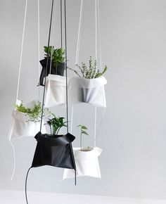 A Simple Solution for Hanging Your Plants | I think I'd want them to be PVC or organdie so that you can see the pot.