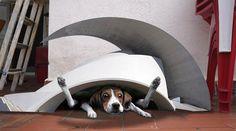 Los bomberos rescatan a un perro atrapado en una caseta diseñada por Santiago Calatrava
