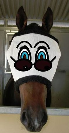 Funny Fly Mask 6 Soft Mesh | eBay